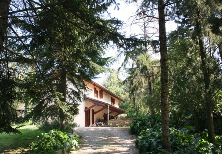 casa_piscina_villa_Pesaro_925-14