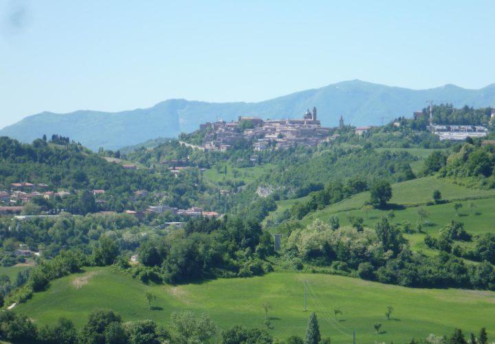 codice R-1037 Urbino (24)