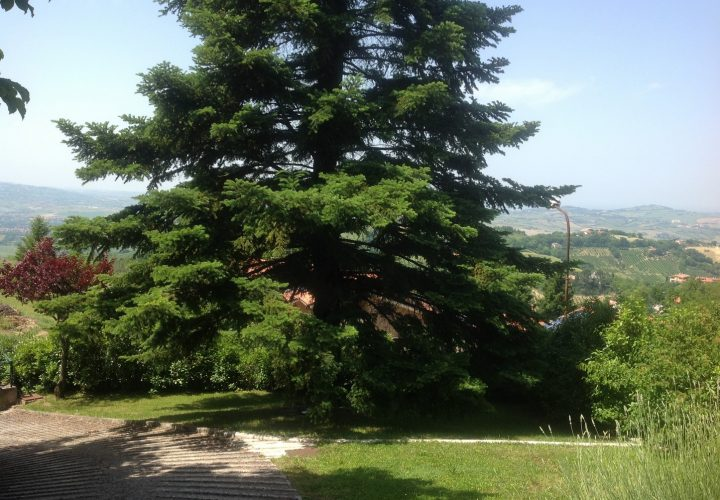 casa_Pesaro_Marche_1155-LL (18)